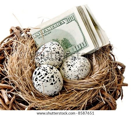 Paper currency and eggs in a nest.