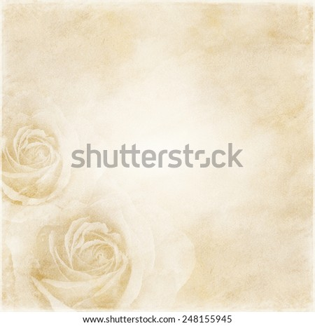 Paper elegant  background with roses - stock photo
