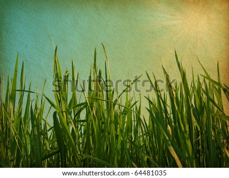 paper texture. Green  grass in grunge and retro style - stock photo