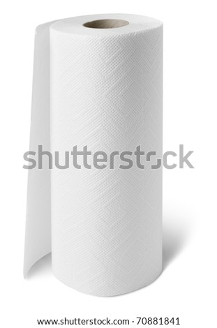 Paper towel roll - stock photo