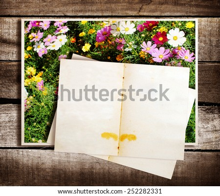 Paper with old photos on grunge wood background.  - stock photo