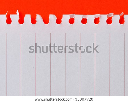 paper with red lines isolated on red background - stock photo