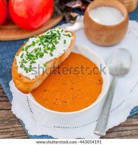 Pappa al pomodoro, Tuscan Tomato, Zucchini, Basil and Bread Cream Soup, square - stock photo