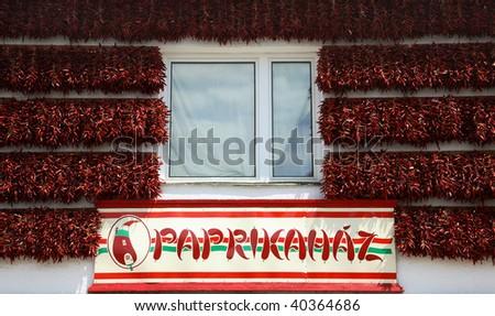paprika Hungary - stock photo