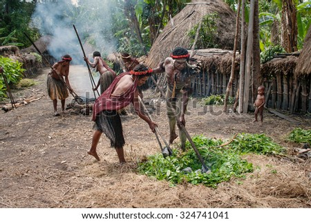 PAPUA PROVINCE, INDONESIA -DEC 28: Unidentified members of a Papuan tribe uses an earth oven method of cooking pig, at New Guinea Island, Indonesia on December 28, 2010 - stock photo