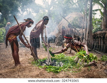 PAPUA PROVINCE, INDONESIA -DEC 28: Unidentified members of a Papuan tribe uses an earth oven method of cooking pig, at New Guinea Island, Indonesia on December 28, 2010