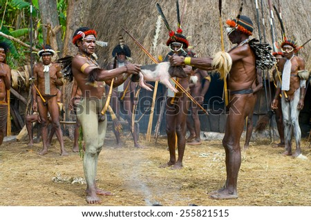 PAPUA PROVINCE, INDONESIA -DECEMBER 28: Unidentified warriors of a Papuan tribe use an earth oven method of cooking pig, at New Guinea Island, Indonesia on December 28, 2010 - stock photo