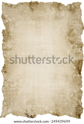 Papyrus - stock photo