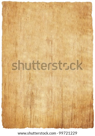 papyrus paper texture - stock photo