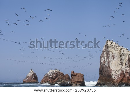 Paracas National Reservation, Islas Ballestas , Perù. Many birds fly over the Pacific Ocean and the rocks with blue sky background - stock photo