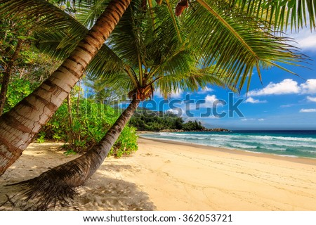 Paradise Anse Takamaka beach on tropical island Mahe in Seychelles - stock photo