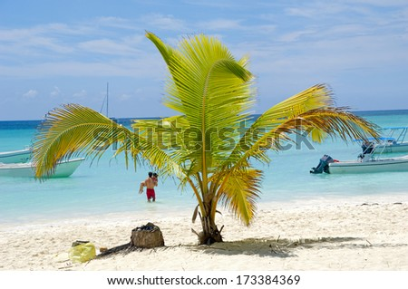Paradise beach at Saona Island, Dominican Republic - stock photo