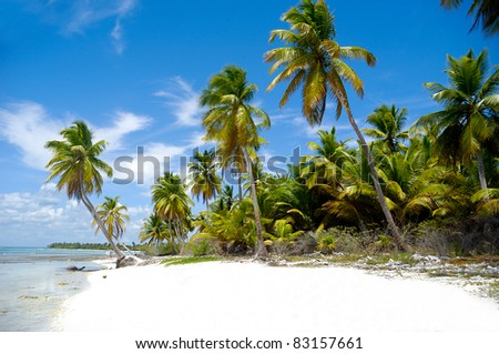 Paradise beach at Saona Island, Dominican Republic