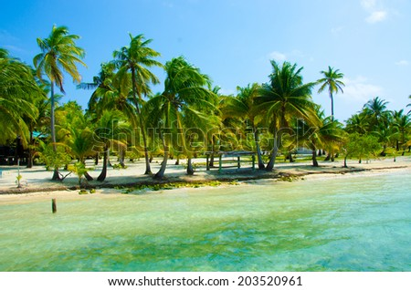 Paradise Beach on beautiful island South Water Caye
