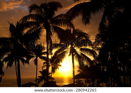 Paradise beach sunset or sunrise with tropical palm trees. Summer travel holidays vacation getaway - stock photo