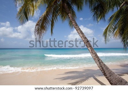 paradise beach view in sunny Barbados