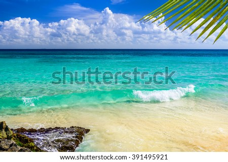 Paradise nature, sand, sea water, rocks, palm tree leaves and summer on the tropical beach.  Playa Del Carmen, Riviera Maya, Mexico. - stock photo