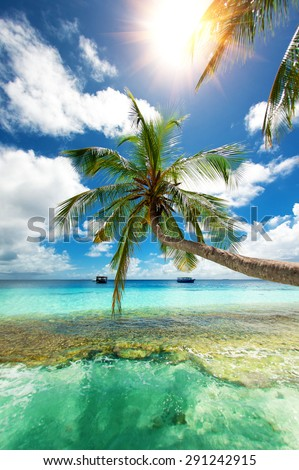 paradise on the ocean - stock photo