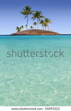 Paradise palm tree island in tropical turquoise beach sea [Photo Illustration] - stock photo