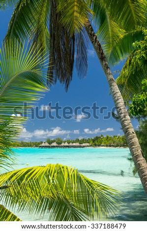 Paradise view of Rangiroa atoll, French Polynesia - stock photo
