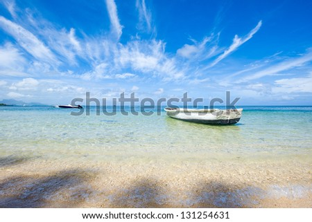Paradise white sand beach and palm tree of a tropical island - stock photo