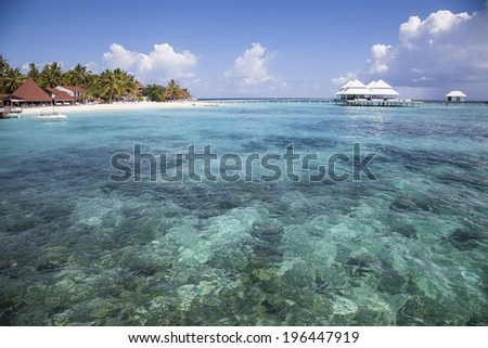 paradisiacal landscape tropical beach in the Maldives - stock photo