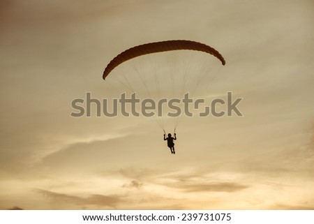 Paraglider flies on background of the sea and sunset - stock photo