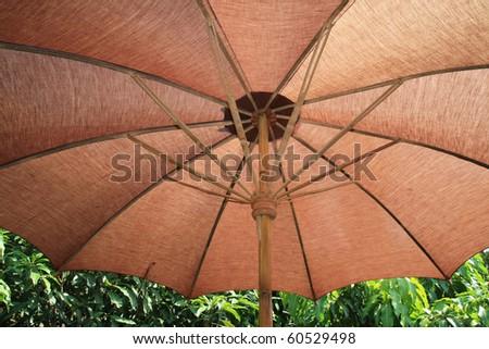 Parasol in the garden - stock photo