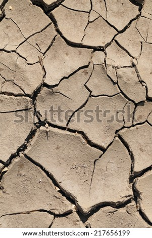 Parched and cracked soil, brown background
