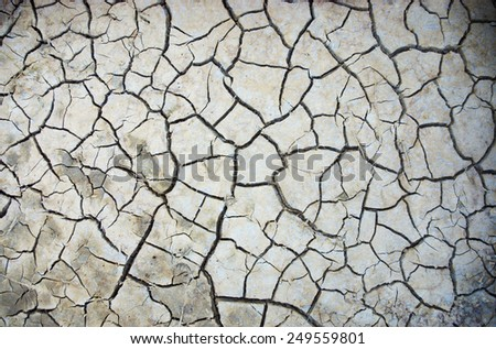 Parched, cracked soil in the hot sun.  - stock photo
