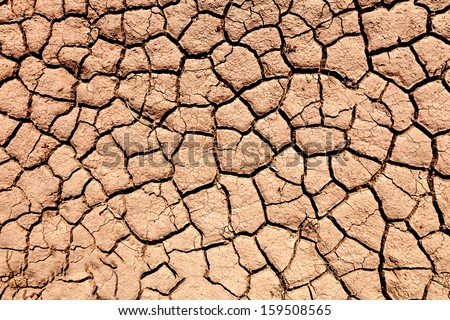 parched soil during the drought