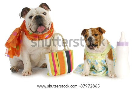 parenting - bulldog mother with puppy and baby bottle - stock photo