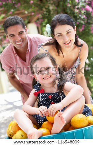Parents Pushing Daughter In Wheelbarrow Filled With Oranges - stock photo