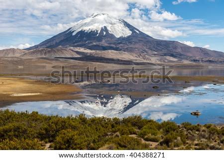 Parinacota volcano and Chungara lake, Lauca National Park (Chile) - stock photo