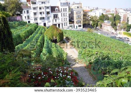 PARIS, FRANCE - SEPTEMBER 10, 2014: Paris - gardens dedicated to Auguste Renoir surround the Museum of Montmartre - stock photo