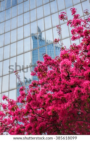 Paris La Defense with spring tree in France - stock photo