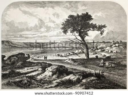 Paris surroundings, Gorges d'Apremont, Fontainbleau forest. Created by Anastasi, published on L'Illustration, Journal Universel, Paris, 1858 - stock photo