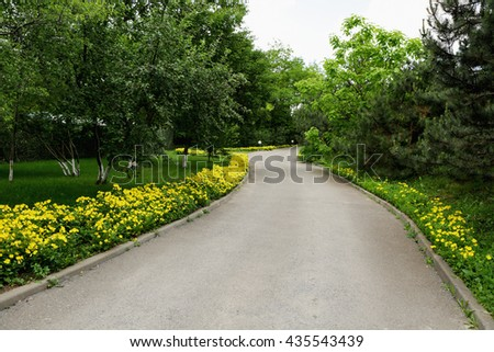 Park Avenue Hotel. The road of yellow flowers. Paved road, path. Highway. Botanical Garden. - stock photo