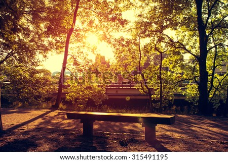 Park Bench in the Evening Sunlight - stock photo