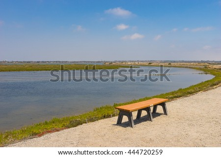 Park bench located on a walking trail near swampy waterway. - stock photo