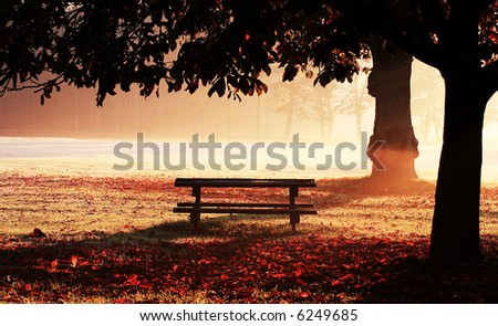 Park bench on misty dawn - stock photo