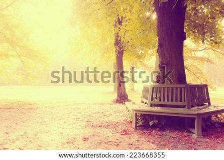Park Bench with a retro vintage instagram filter effect - stock photo