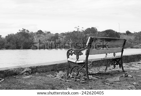 Park bench with a sea view and tree ,black and white - stock photo