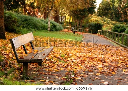 Park Bench with Autumn Leaves - stock photo