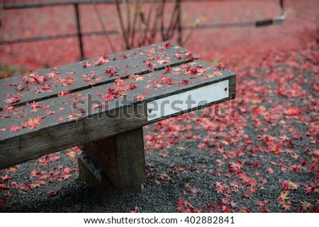 Park bench with red maple in autumn,Kyoto,Japan - stock photo