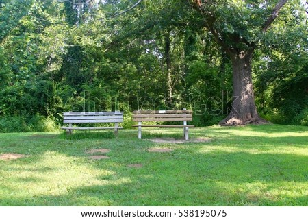Park benches under the shade trees.