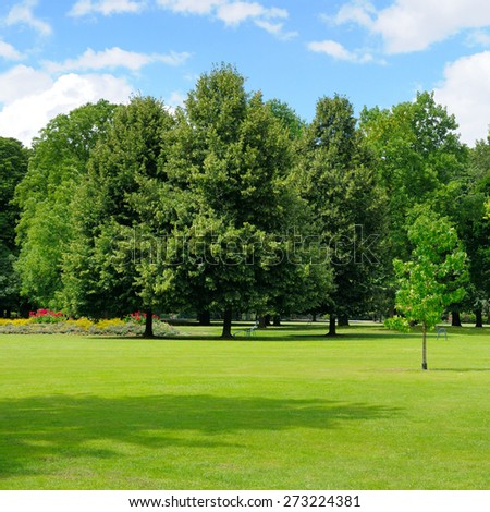 park, green meadow and blue sky - stock photo
