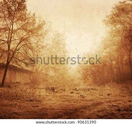 Park in a fog (grunge image) - stock photo