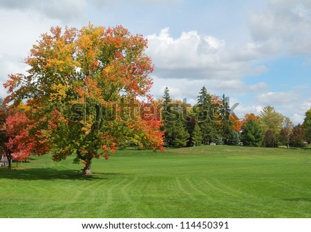 park in autumn - stock photo