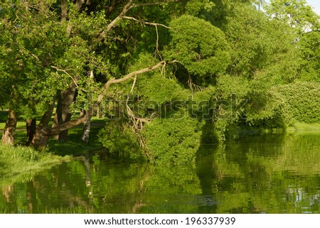 Park in english style. Summer day on lake.  - stock photo